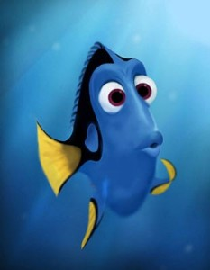 confused dory
