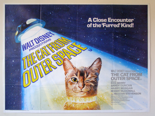 cat from outer space.jpg