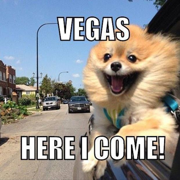 VEGAS HERE I COME.jpg