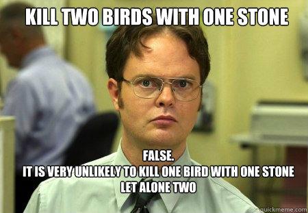 two birds one stone.jpg