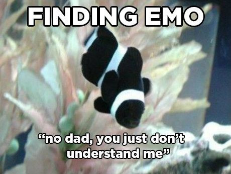 Awesome finding nemo meme 100 Disney Memes That Will Keep You Laughing For Hours