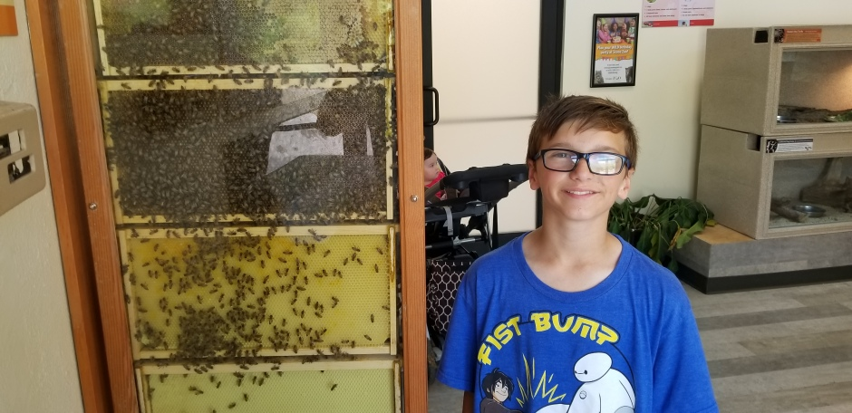 owen and bees