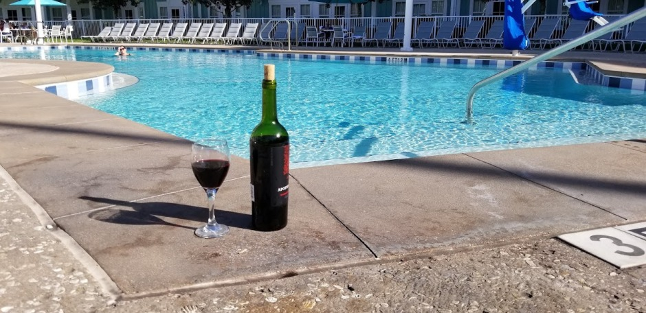 WINE AT POOL DAY 10 2018