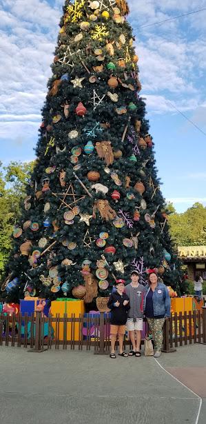 family tree 1 day 12 2018