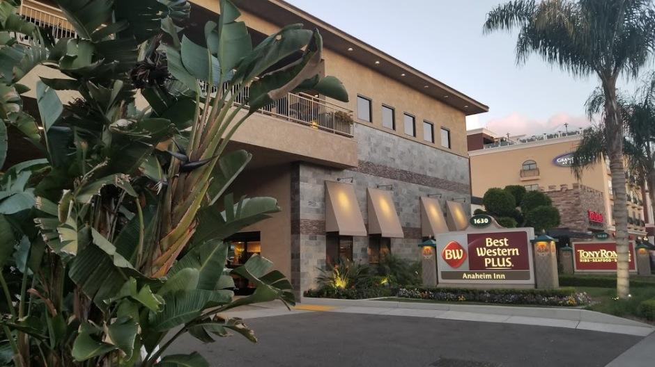 HOTEL SOLO TRIP 3-19.jpg