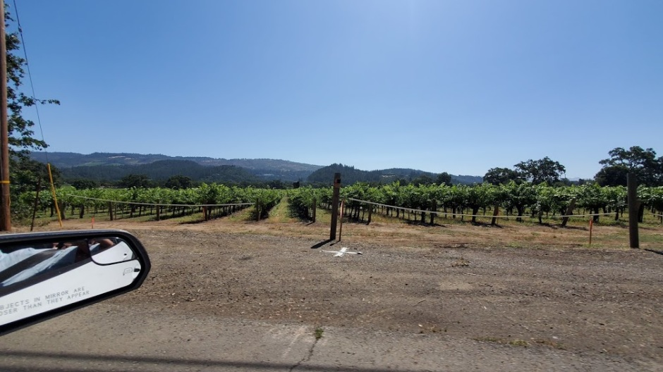 DRIVING WINE COUNTRY 1 DAY 4 CA 2019