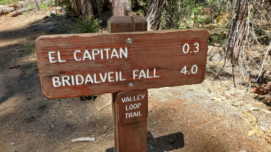 TRAILHEAD DAY 6 CA 2019.jpg