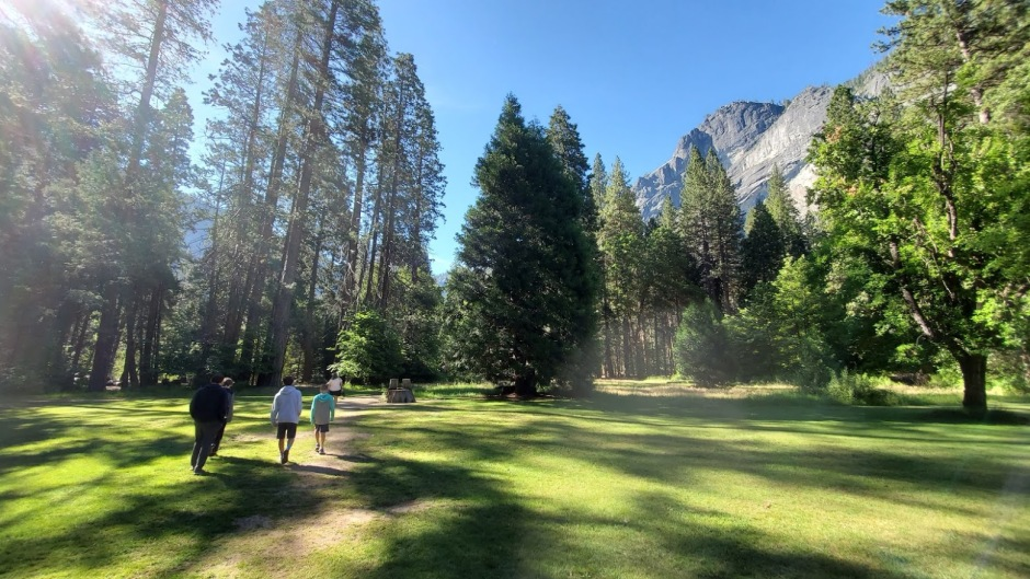YOSEMITE MEADOW DAY 6 CA 2019.jpg